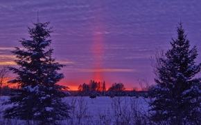 hiver, coucher du soleil, champ, paysage
