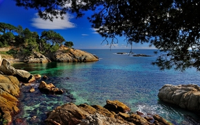 castell-platja d'aro, catalonia, spain, costa brava, Costa Brava, Catalonia, Spain, Mediterranean, stones, branch, coast