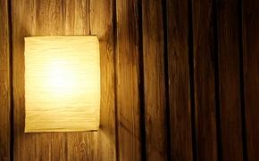 lmpara, lmpara, rbol, luz, fondo, tablero, bamb, linterna, marrn