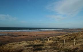 море, пляж, трава, ветер