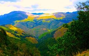 горы, кусты, деревья, пейзаж