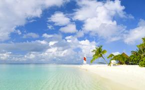playa, trpicos, mar, arena, Palms, yate