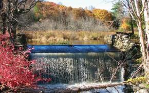 autunno, cascata, alberi, paesaggio