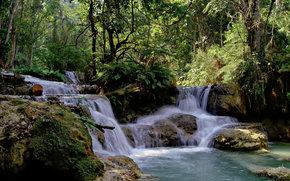 forest, waterfall, landscape