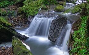 瀑布, 石头, 树, 景观