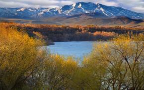 山, 湖, 树, 黄昏
