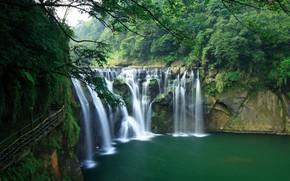 cascade, arbres, tang, paysage