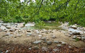 kleinen Fluss, Steine, Bume, Filiale, Natur