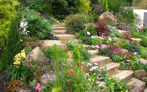 Garden, beds, stage, nature