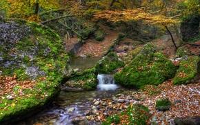 осень, лес, речка, камни, пейзаж