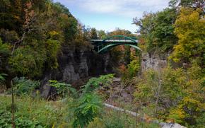 rocks, bridge, Trees, landscape