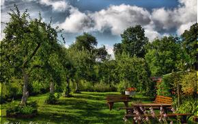 ogrd, drzew, sklepy, niebo, krajobraz