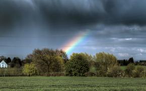 поле, деревья, тучи, радуга
