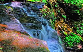 fiume, ruscello, Rocks