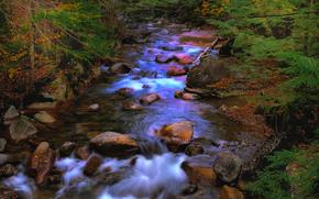 река, лес, камни, пейзаж