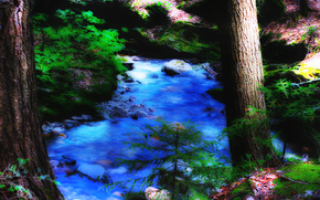 лес, река, камни, деревья, природа