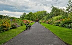 Garden, park, road, shop, landscape