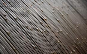 Текстуры, бамбук, забор
