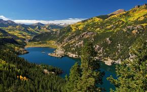 forest, san juan mountains, lake, lake san cristobal, Mountains