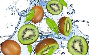 kiwi, verde, acqua, gocce, spruzzo, frutta, frutta, kiwi, verde, acqua, gocce, spray, freschezza