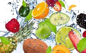 frutta, fresco, acqua, gocce, spruzzo, mela, avocado, noce di cocco, ananas, limone, albicocca, mora, lampone, fragola, banana, calce, menta, frutta, freschezza, acqua, gocce, spray, mela, avocado, noce di cocco, ananas, limone, albicocca, mora, lamponi,