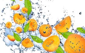 albicocca, arancione, acqua, gocce, spruzzo, frutta, frutta, albicocca, arancione, acqua, gocce, spray, freschezza
