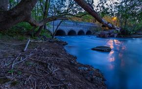 парк, река, мост, солнце, закат