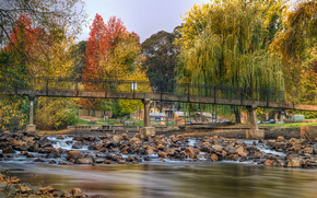 秋天, 河, 桥, 树, 石头