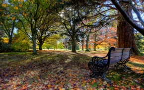 pollard park, blenheim, new zealand, Blenheim, New Zealand, park, autumn, bench, Trees, leaves