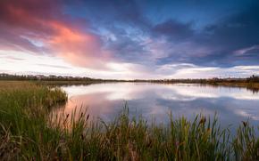 Canada, lago, erba, canna, case, insediamento, sera, cielo, nuvole