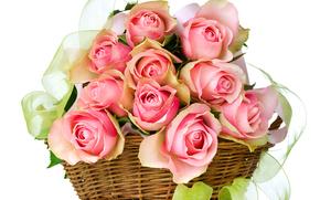 basket, bouquet, tape, Rose