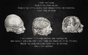 head, fears, trepanation, thought, brains