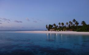 Maldivas, trpicos, praia, Palms
