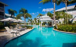tropics, resort, Palms