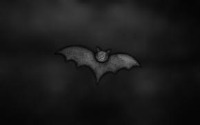 boccale, bat, uccello, ali, sfondo nero
