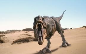 ruggito, sabbia, dinosauro, Rex, fauci