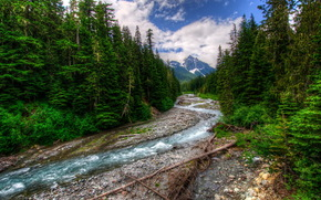 river, small river, forest, Trees, mountain, snow, clouds.