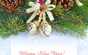 Christmas decorations, gilding, Cones, branch, wish, New Year, Tree