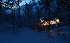 neve, paesaggio, freddo