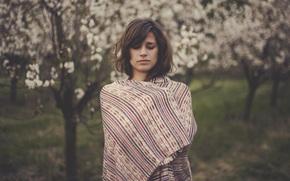 carta da parati, sfondo, freddamente, ragazza, stato d'animo, alberi, faccia, coperta, foglio, natura
