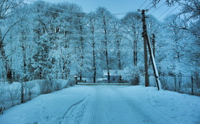 Trees, snow, Winter, Wire, landscape, road