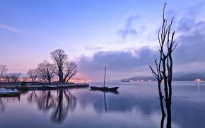 mattina, Prima dell'alba, semaforo, lago, riflessione, barca, alberi, nebbia, foschia, Hills, lilla, cielo, nuvole