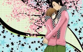девушка, звездочки, парень, сакура, абстракция, объятия, цветы