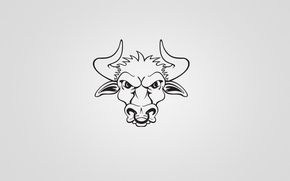 Minimalisme, taureau, corne