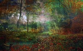 foresta, autunno, paesaggio
