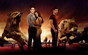 twilight, Wolves, Vampires