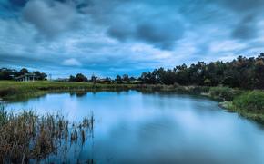stagno, lago, canna, alberi, Costruito, nuvole