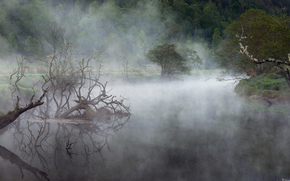 fort, lac, brouillard