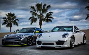 bianco, Porsche, argento, cielo, nuvole, Porsche, palma
