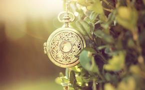 карманные, металл, часы, узор, цепочка, зелень